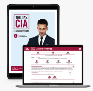 IIA CIA Learning System 7.0 P1 Online